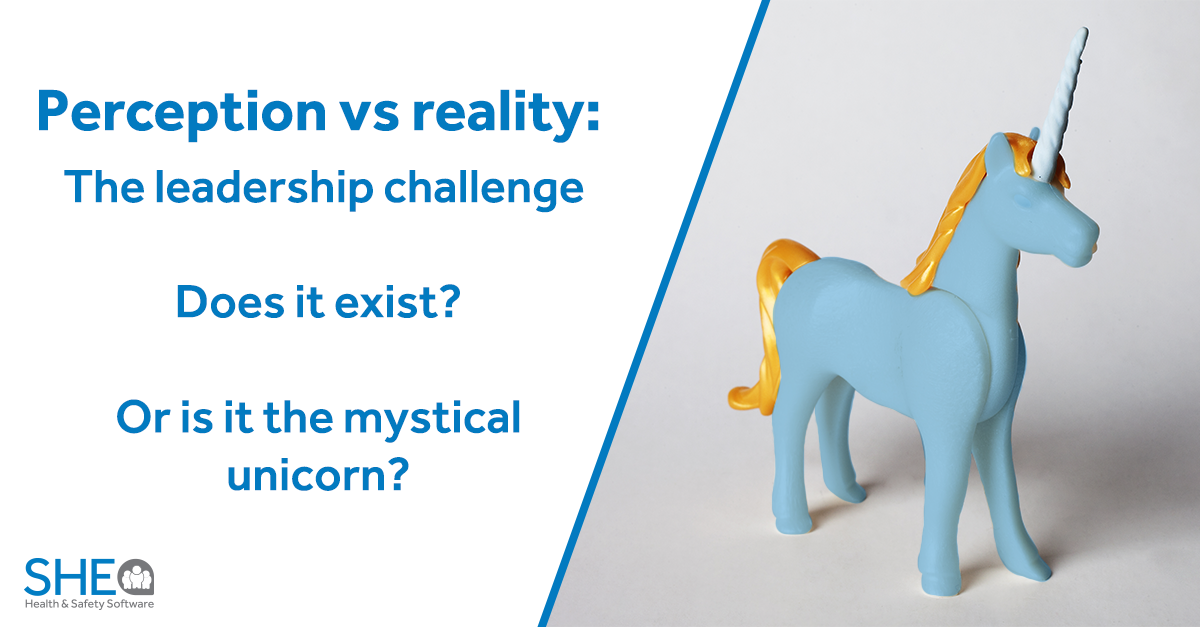 unicorn-perception-reality-she